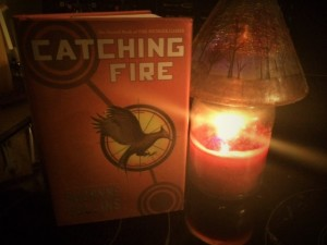 Before you ask, yes I took a picture of my Catching Fire book next to a candle with a woodland scene on top of it. Have some respect. That candle is from Yankee Candle and it smells heavenly.