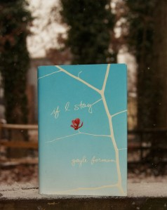 If I Stay by Gayle Forman (I found it only fitting to take this picture as there was a dusting of snow on the ground. Read the book and you'll see why.)